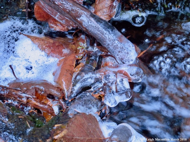 29-ice formations