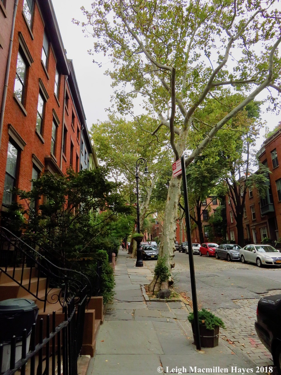 30-Brooklyn Heights