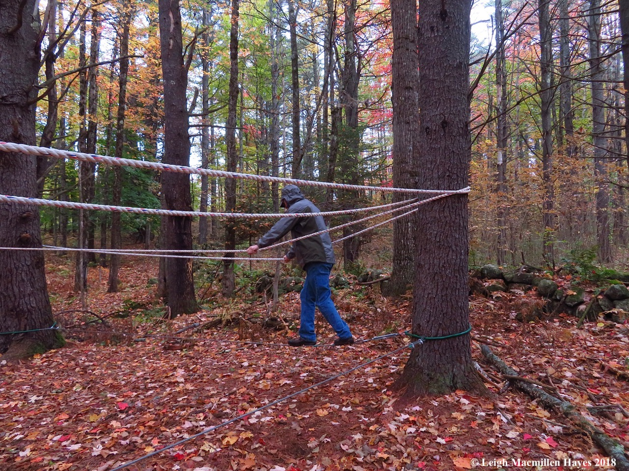 7-walking the tightrope