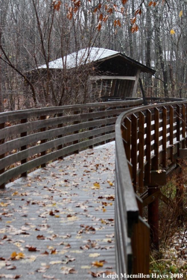 1-Bob Dunning Bridge