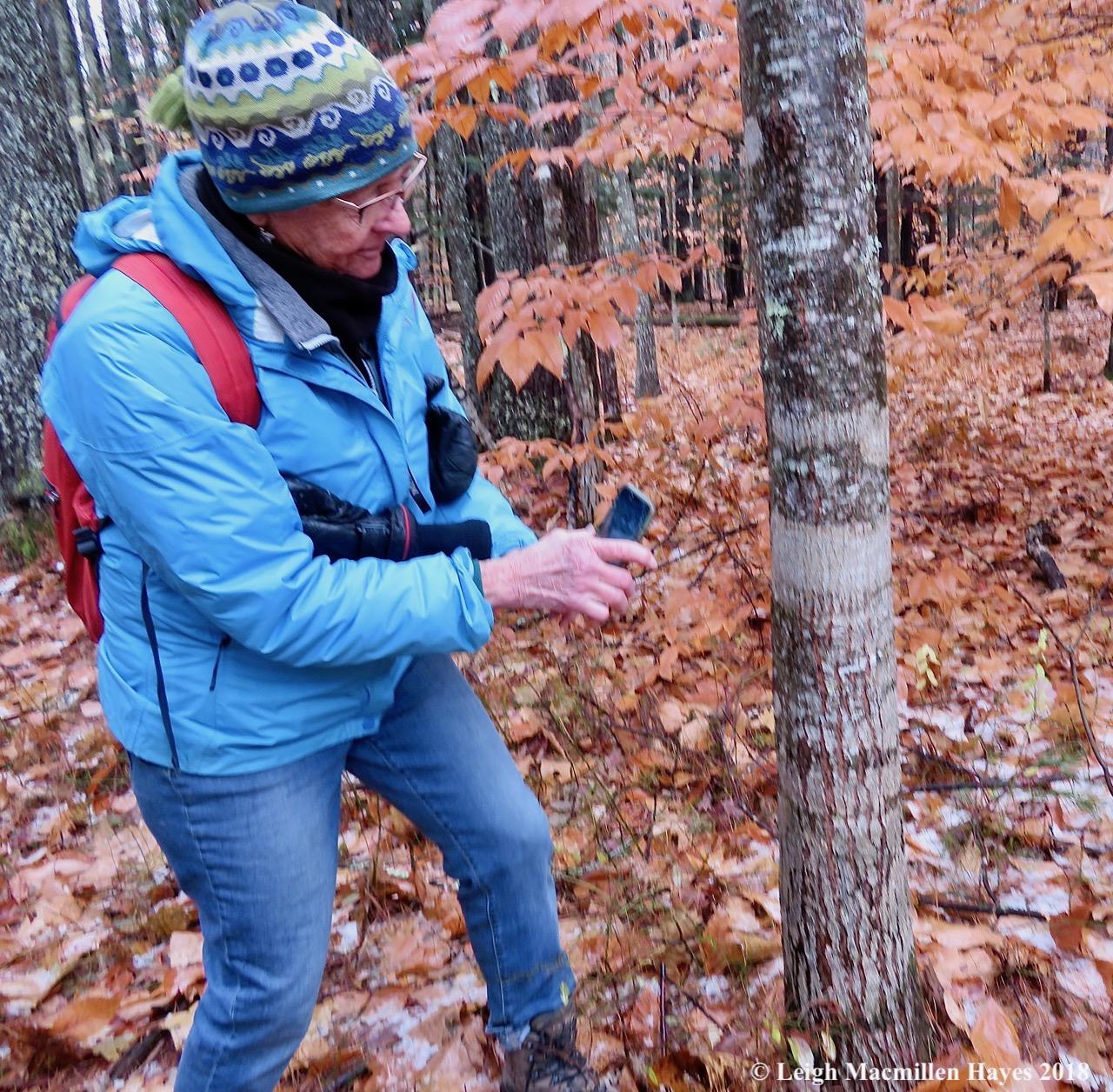11a-JoAnne photographing script lichen