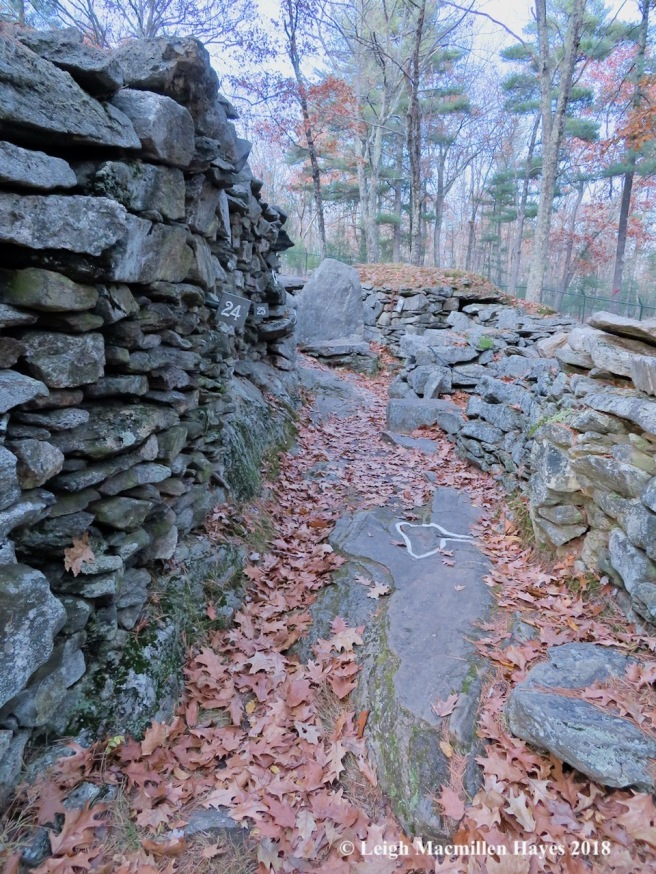 14-Wall and pathway to Oracle Chamber