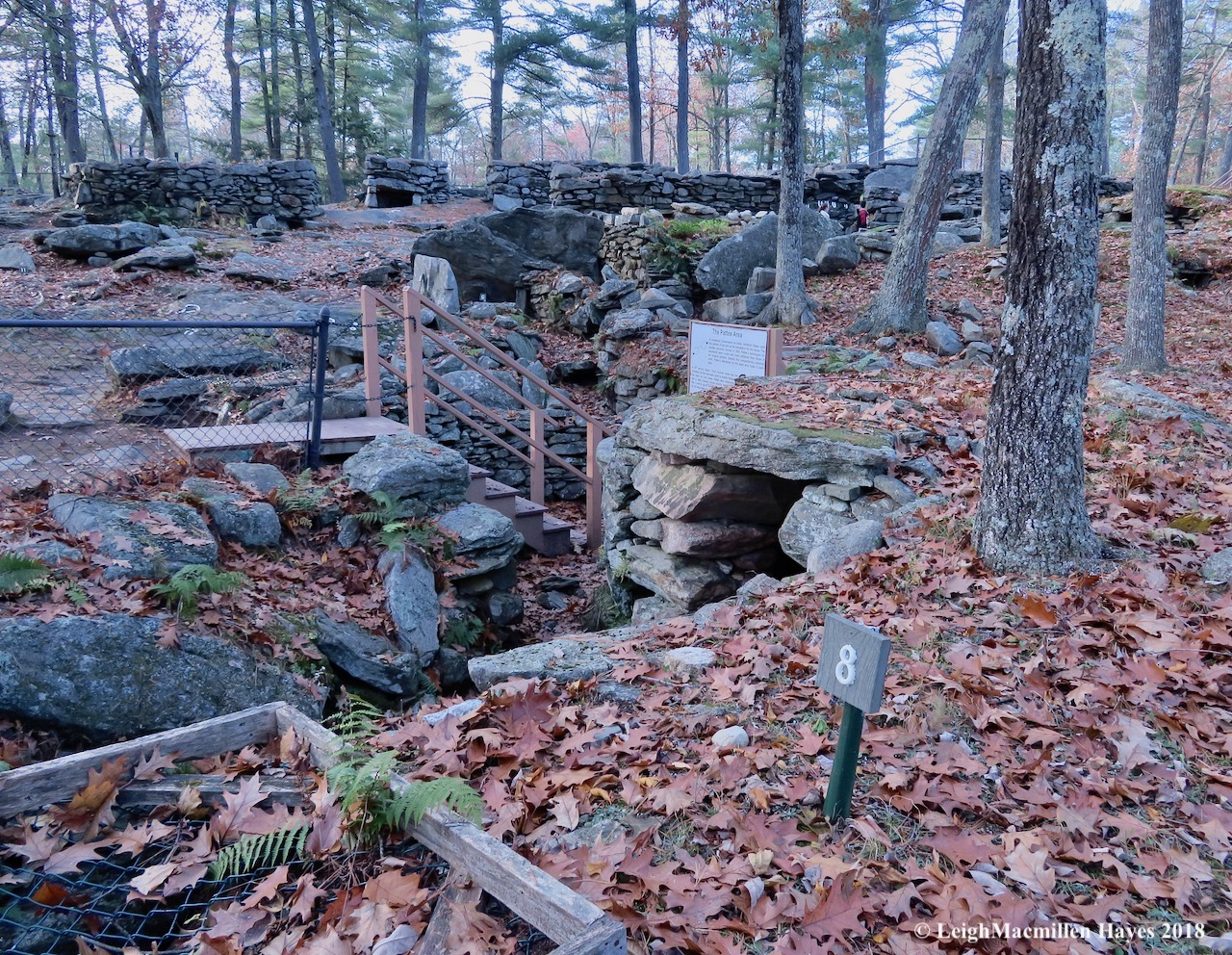 4-Well of crystals, Pattee Area